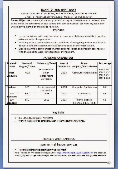 IT Resume Format For Freshers Free Download