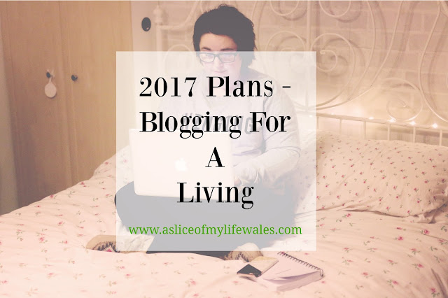 2017 plans blogging for a living and making a decent part time wage through blogging