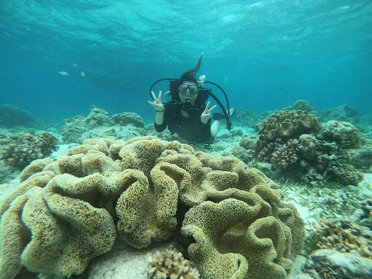 SCUBA Diving in Cebu a Mindfulness in Practice