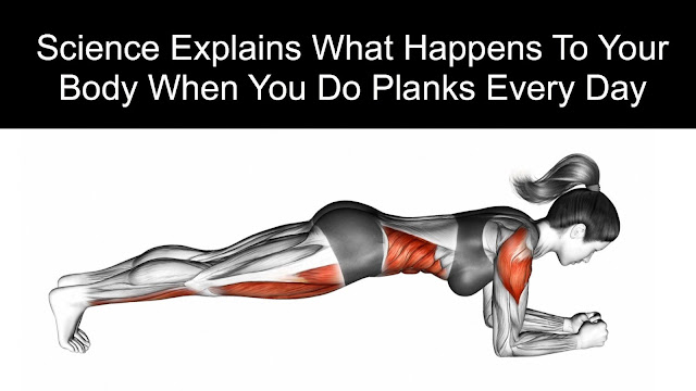 What Happens to Your Body When You Do Planks Every Day   (Science Explains )