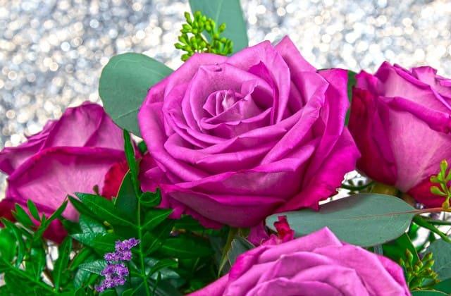 filosofi bunga mawar