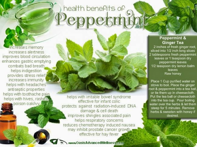 hover_share weight loss - health benefits of Peppermint