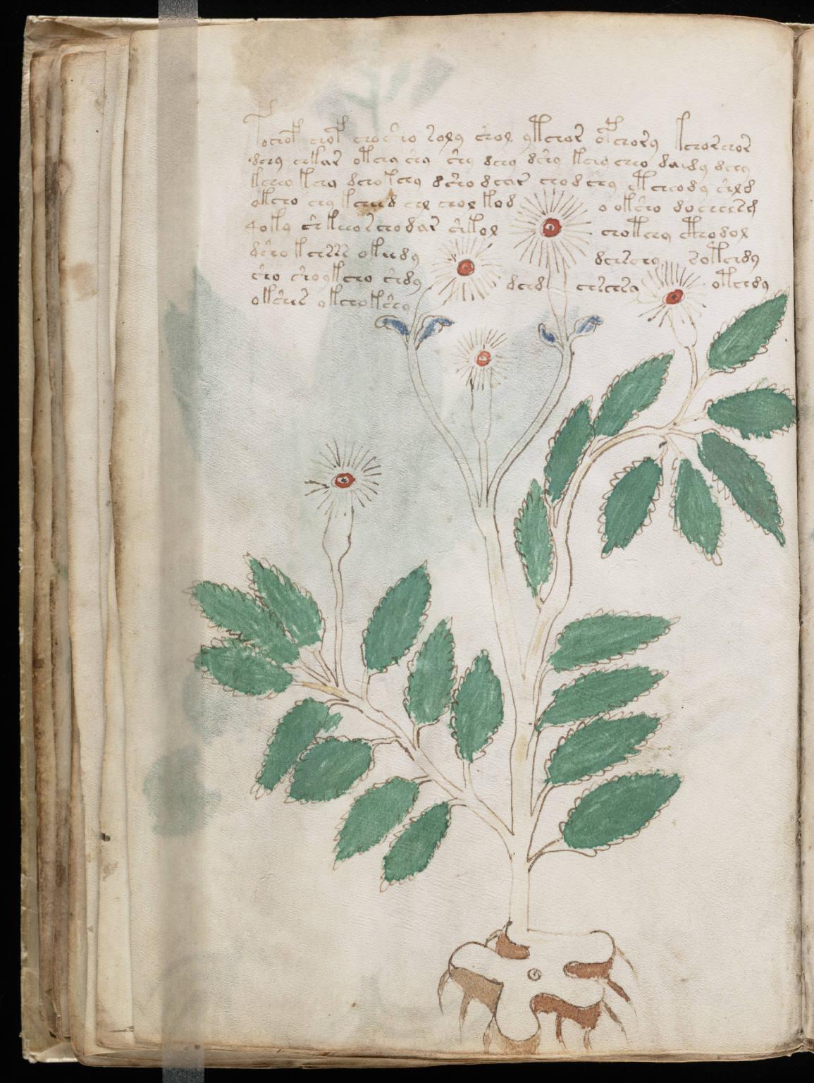 manuscrito052