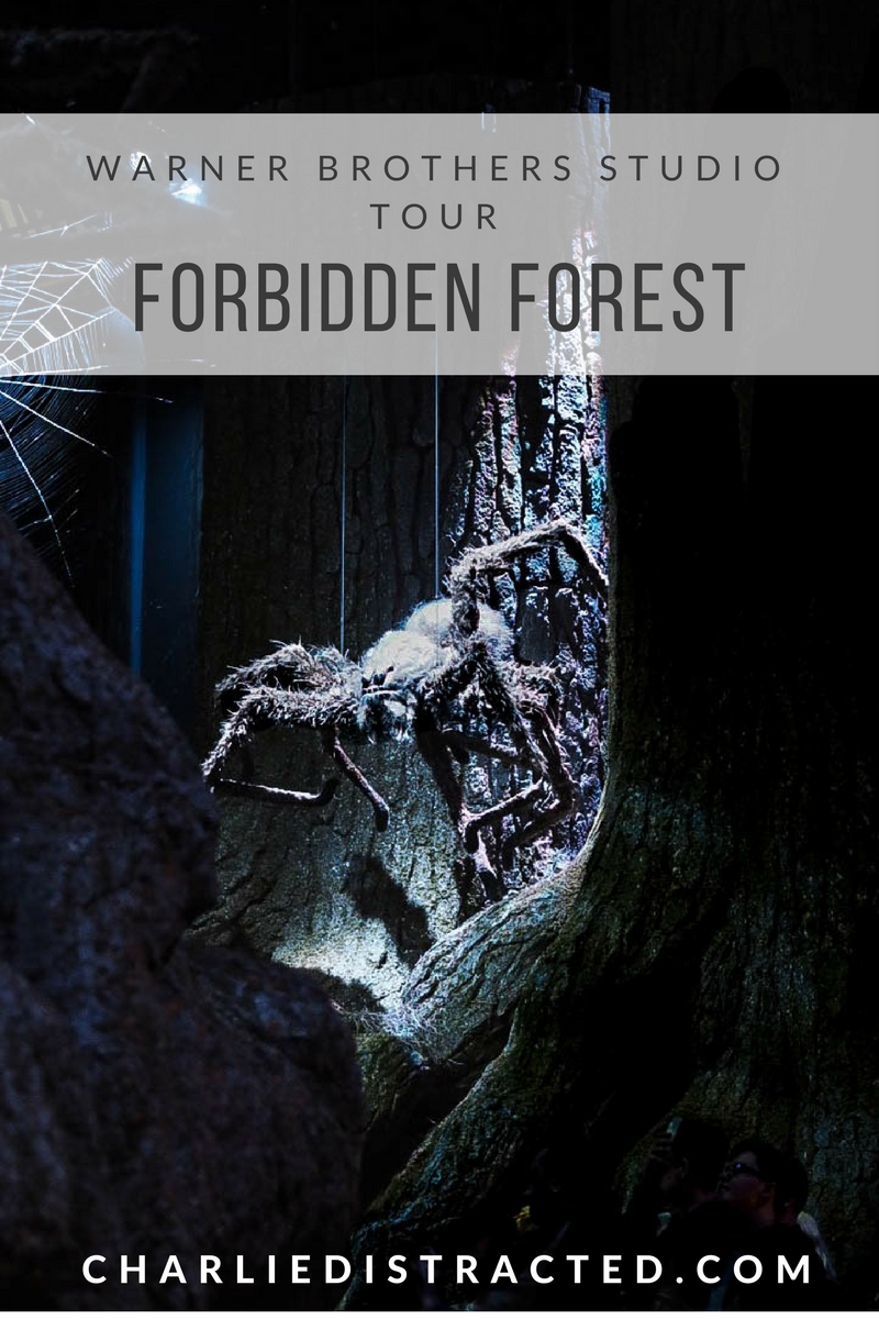 Forbidden Forest at Harry Potter Warner Brothers Studio Tour