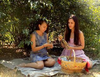 Prieteni dragi, vin din miere de albine, fericire, picnic de vara
