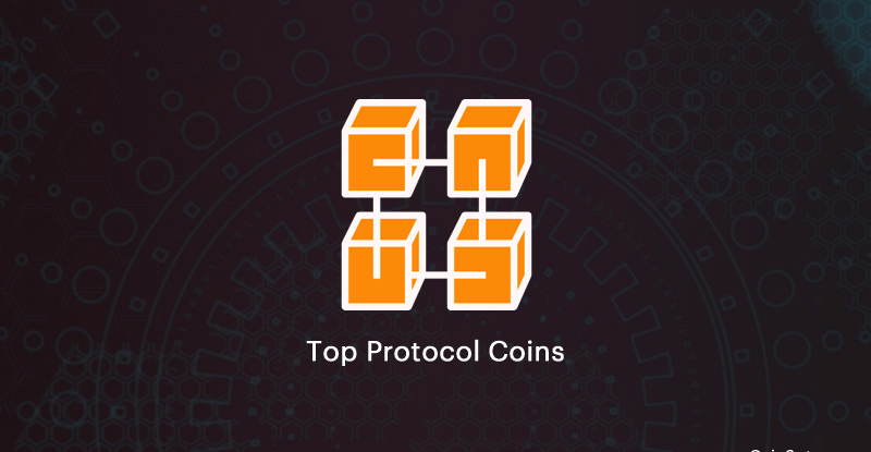 the-protocol-coins