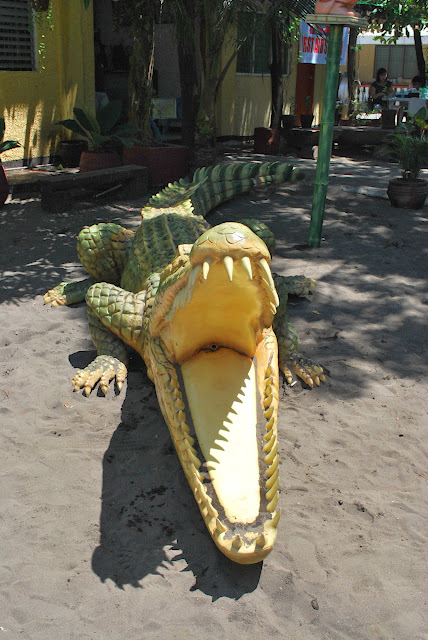 life size crocodile sculpture at Villa del Prado beach resort