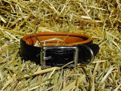 Collare taglia S in cuoio nero con imbottitura a contrasto fatto su misura e cucito a mano