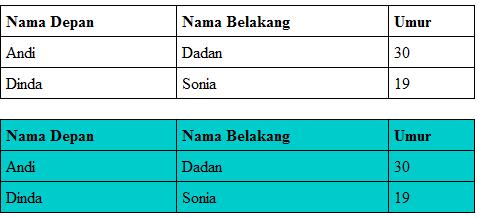 contoh tabel dengan style yang diambil dari ID