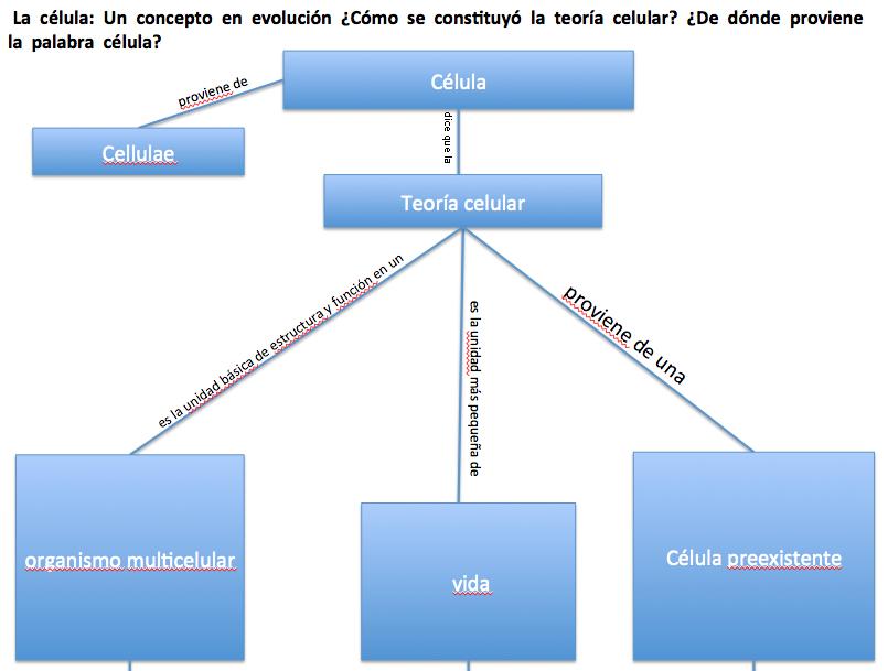 Biología Iii De Cristian Espinosa Mapa Conceptual 4 La