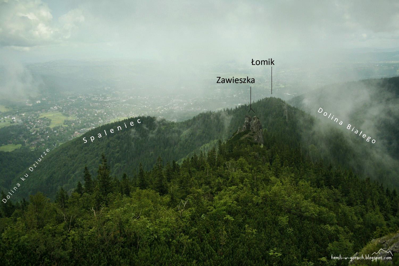 Panorama ze Sarniej Skały