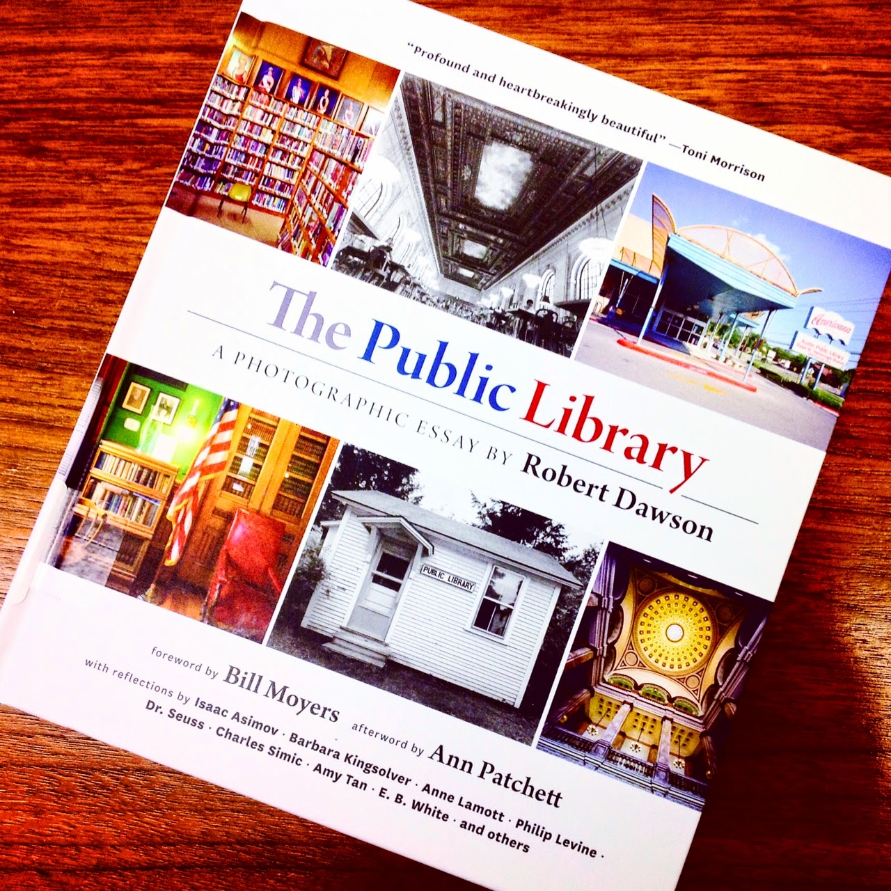 Public Library Essays