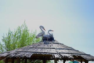 Село Золотой Колодезь. Источник целебной воды облагорожен силами учащихся Золотоколодезной школы