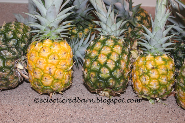 Eclectic Red Barn: Pineapple Crop