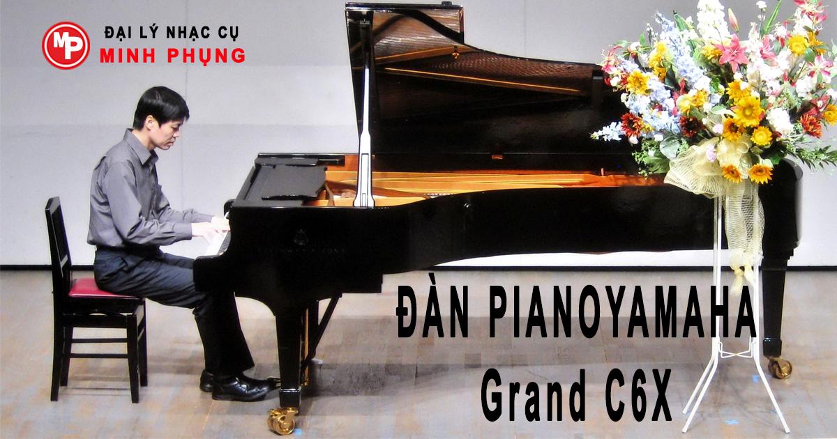 Sản phẩm sử dụng những vật liệu cao cấp, đảm bảo các yêu cầu về đàn piano Grand.