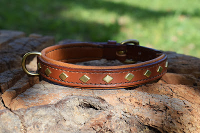 Padded dog collar with diamond shaped brass studs made on measure and had stitched