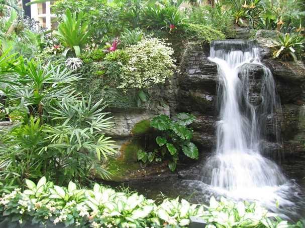 Backyard Garden Waterfall Design Ideas READ NOW   New Home Design
