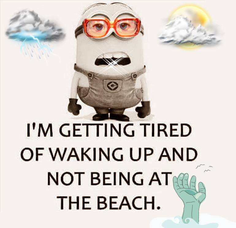 Funny Beach Quotes | 115 Funny Beach Captions And Quotes Cute Instagram Quotes