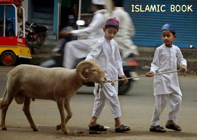 Bakra Eid Funny HD Images Downlaod