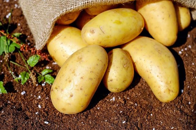 10 Fashionable Potato Recipes in India