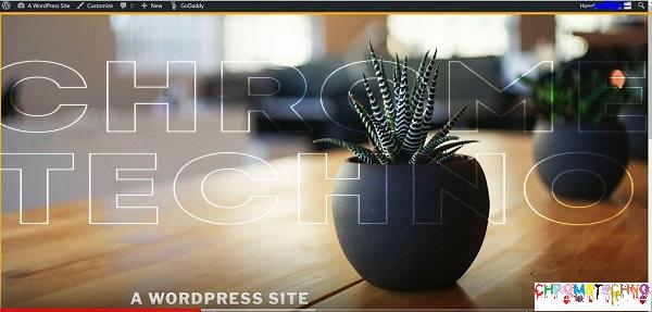 default WordPress theme