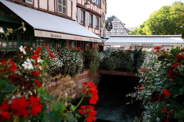 дорога вин Эльзаса, куда поехать, что посмотреть, Кольмар, Эльзас, Франция, аисты, вино