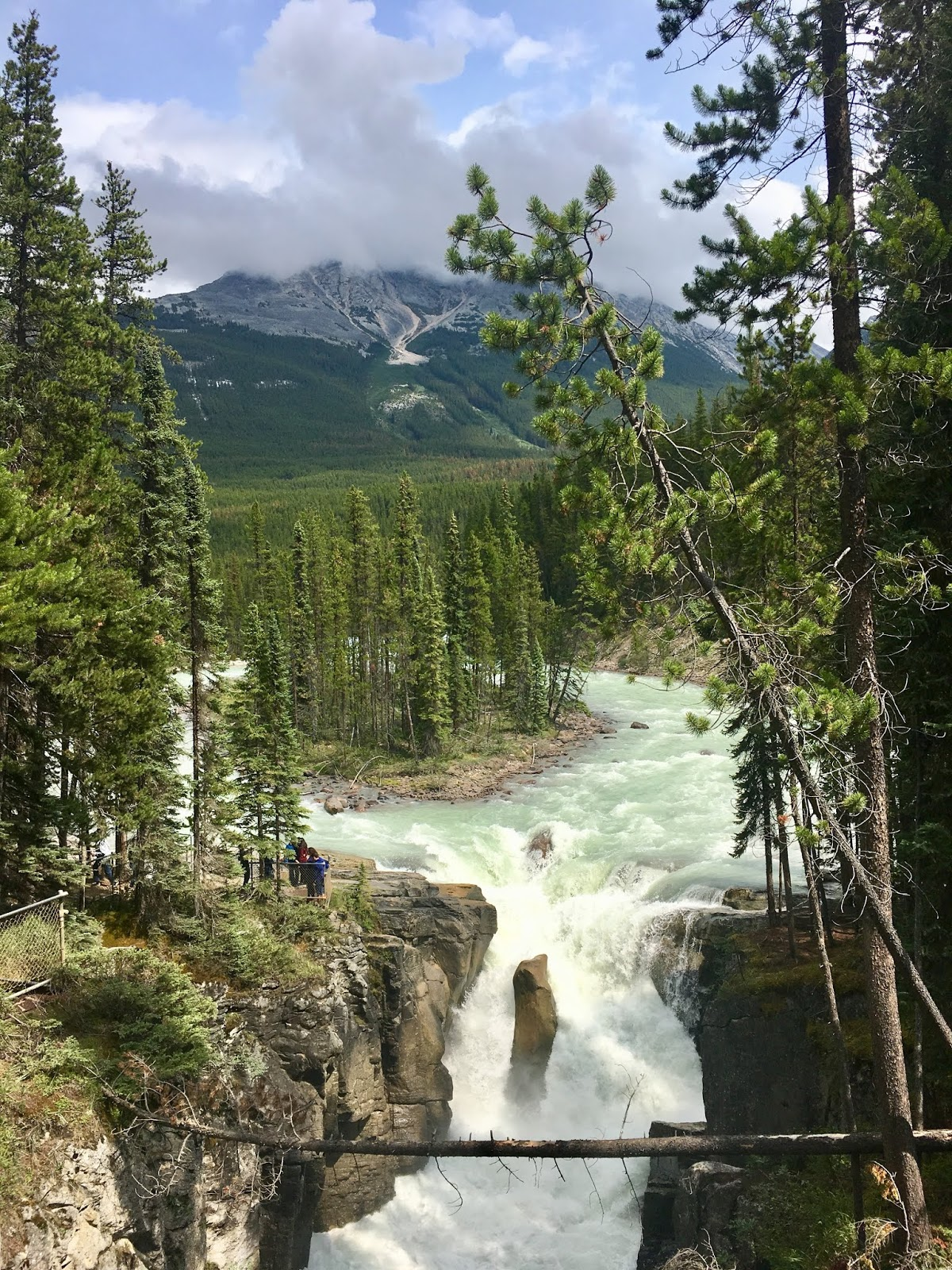 Sunwapta Falls | Icefields Parkway Stop | Where to stop on the Icefields Parkway | Jasper National Park | What to do in Jasper | A Memory of us