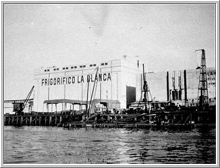 EL PROYECTO DEL FRIGORIFICO ARGENTINO | S T R A V A G A N Z A