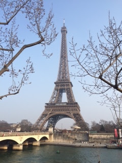 Pic of Eiffel Tower over River Seine