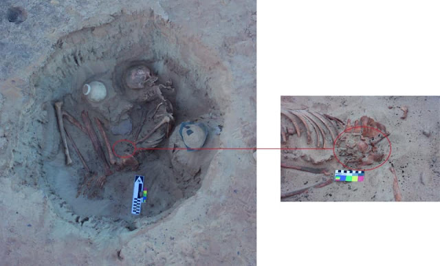 3,700-year-old skeletons of woman, fetus discovered in Egypt's Aswan