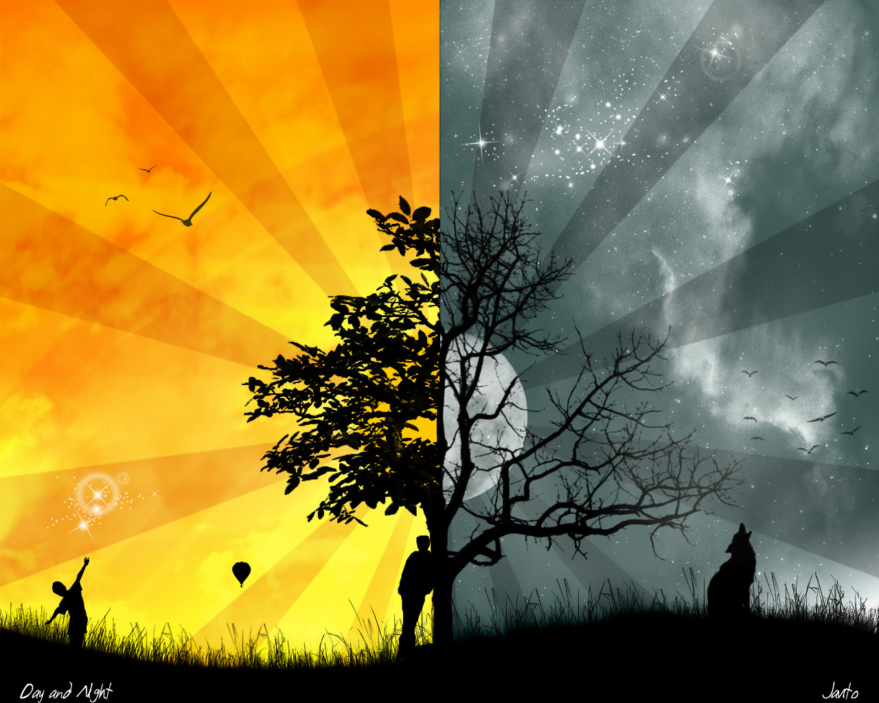 Image Gallary 9: Beautiful and latest cool wallpaper designs for desktop