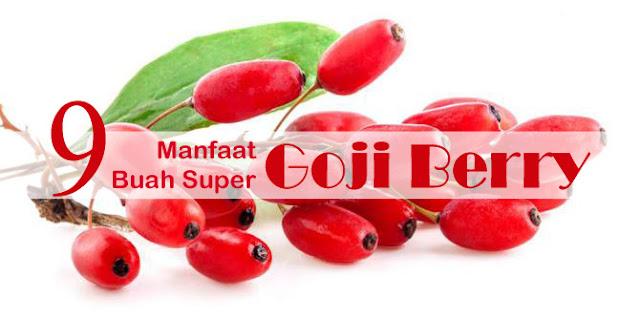 9 Khasiat Utama Goji Berry
