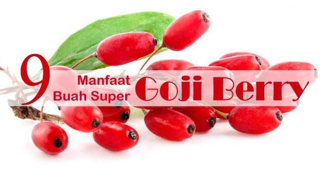 Kandungan Dan Manfaat Buah Goji Berry
