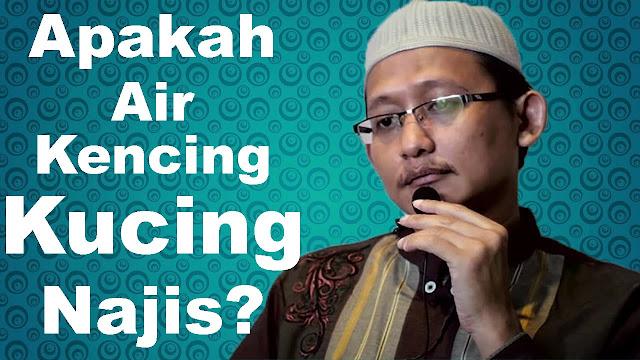 Viral !! Video Ustad Salafi Abu Yahya Badrusalam Sebut Kencing dan Kotoran Kucing Tidak Najis
