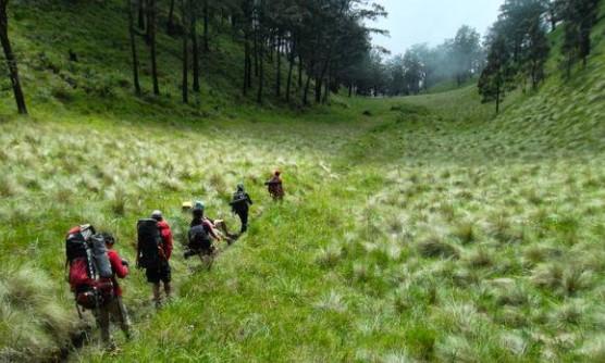 Perkiraan Biaya Mendaki Gunung Lawu - Tarif Guide, Porter, Transportasi, Simaksi, Homestay. Sewa Perlengkapan