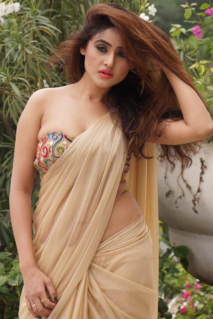 sony charishta saree navel Latest hd hot actress images Sony Charishta