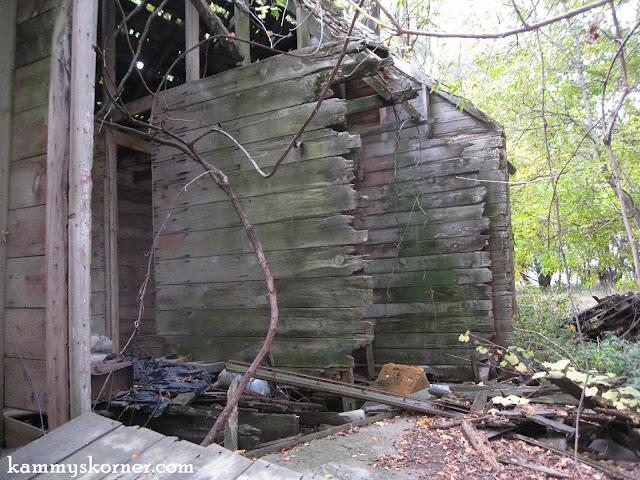 Kammy's Korner: Rescued Barn Door From A Forsaken Iowa Farm