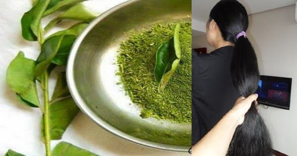 One Herb That Can Give You Long And Strong Hair In Only One Month