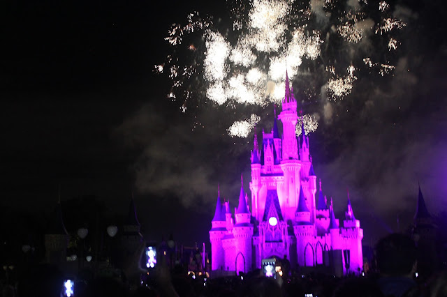 Walt Disney World, Mickey Mouse, Cinderella's Castle, Apartment 203 Blog Month in Review