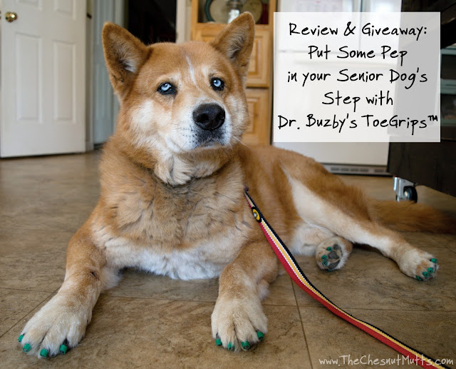 Review & Giveaway: Put Some Pep in your Senior Dog's Step with Dr. Buzby's ToeGrips™