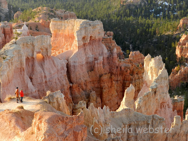 visitors are having a close up to with the hoodoos
