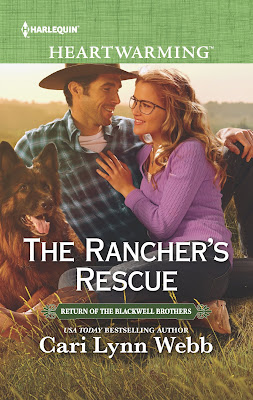 The Rancher's Rescue cover