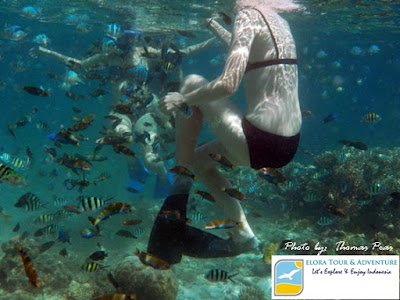 bule cakep happy snorkeling di tanjung putus dan pulau balak