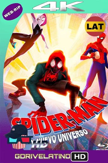Spider-Man: Un Nuevo Universo (2018) WEB-DL 4K HDR Latino-Ingles MKV