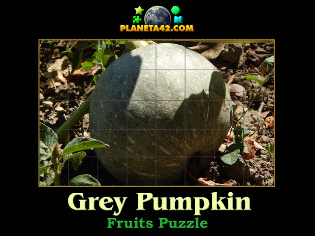 Grey Pumpkin Puzzle