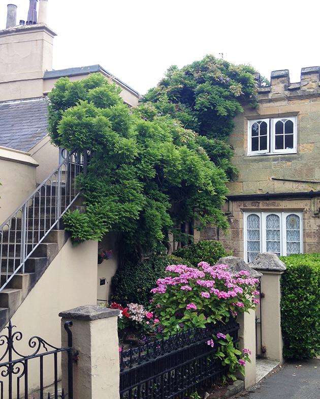 St Leonard's Gardens - Parks & Gardens UK