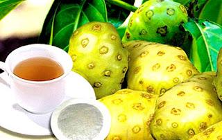 cara mengolah buah mengkudu yang benar,cara mengolah buah mengkudu menjadi obat tradisional,cara mengolah buah mengkudu untuk diabetes,cara mengolah mengkudu untuk obat,