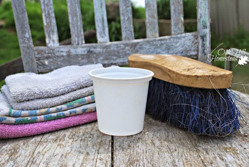 Items to keep your milk clean: washcloths, strip cup, brush. (c) Oak Hill Homestead