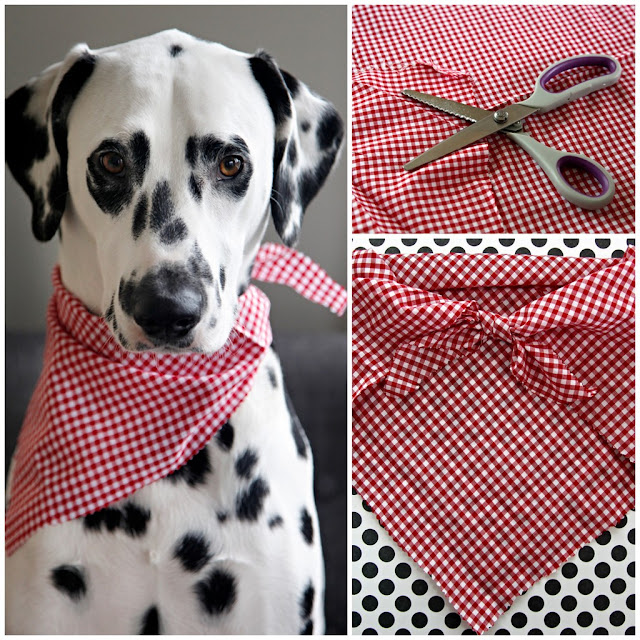 Easy No-Sew Pet Bandana
