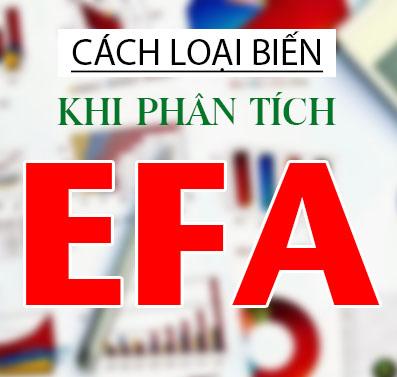 phan-tich-efa-spss
